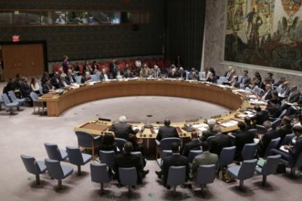 WFUNA to Launch Security Council Election Initiative in May