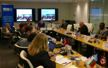 217th Meeting of the Executive Committee